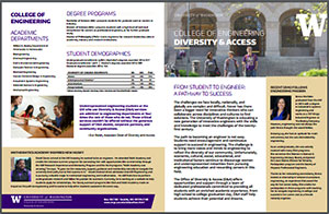 thumbnail image of Diversity & Access Fact Sheet