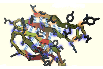 image of a protein