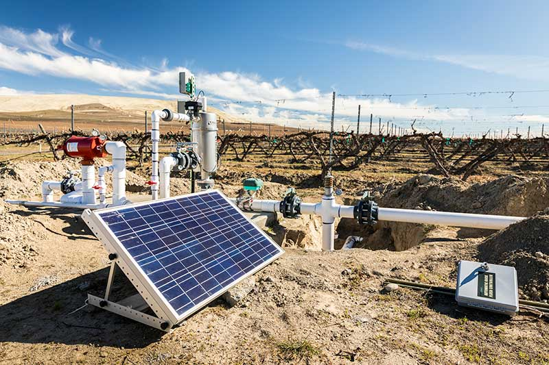 solar panel and pumps in vineyard