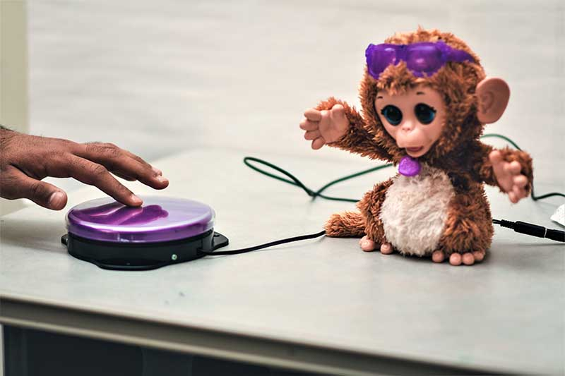 photo of toy monkey attached to button