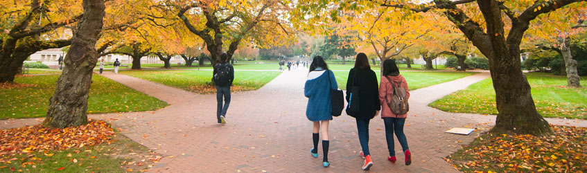 Students walking through the quad in fall