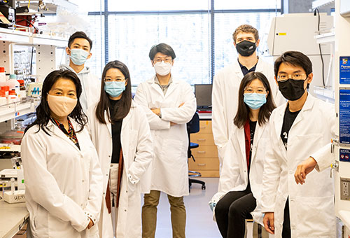 Researchers in Zhang's Nanoparticle Lab