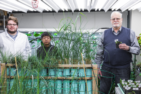 Grasses growing in tubes in the foreground. Two people stand behind them. Another person standing to the right.