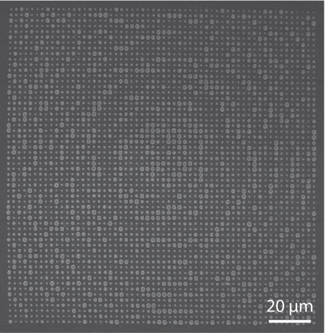 A scanning electron micrograph image of the surface of the optical element.
